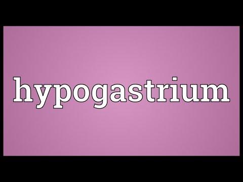 Header of hypogastrium