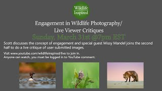 Engagement in Wildlife Photography