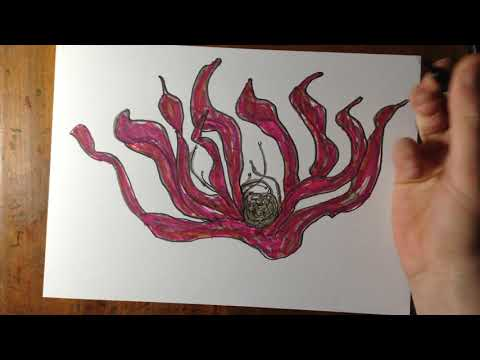 Drawing A Flower With Pens Then Coloring It
