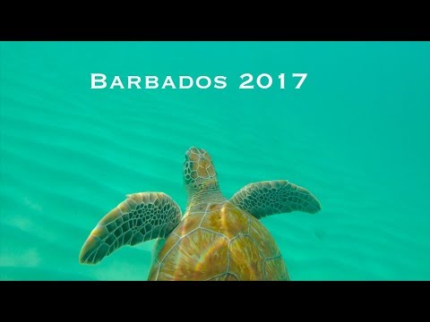 Barbados 2017 / Travel Vlog