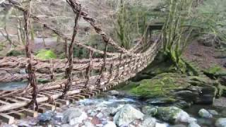 奥祖谷 二重かずら橋(女橋)