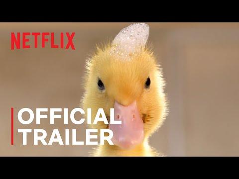 Tiny Creatures | Official Trailer | Netflix