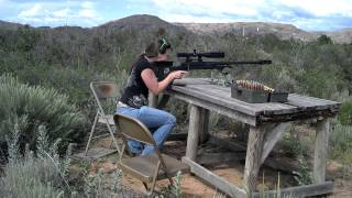 shooting an armalite ar50 a1 50 bmg 1 mile