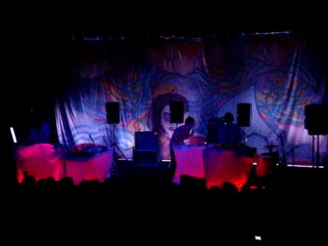Animal Collective - My Girls (live in Auckland)