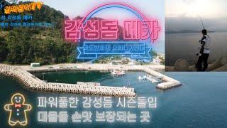 길라잡이TV-방구석 도보권♀️경남 고성 감성돔 최고시…