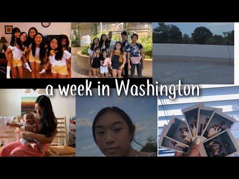 A Week In Washington   Alicia Ferrer