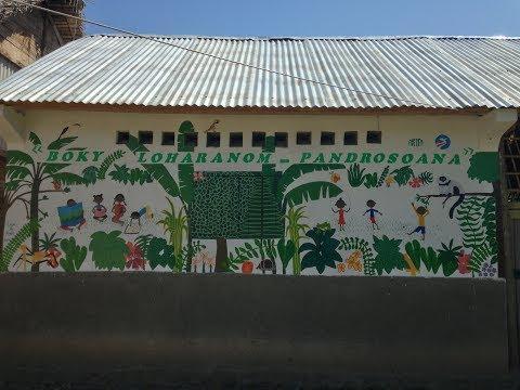 Kianjavato Madagascar