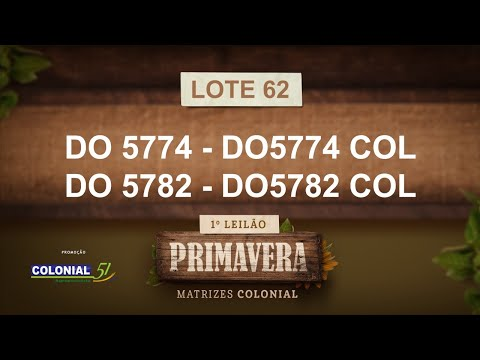 LOTE 62   DO 5774,5782