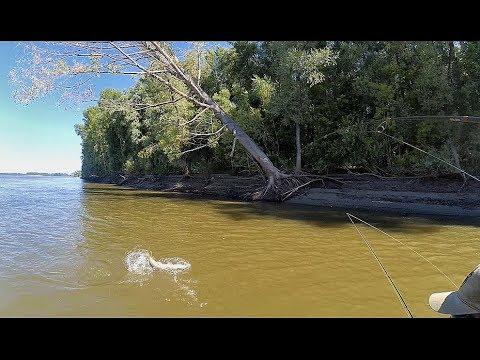 ЭТО БЕСПРЕДЕЛ !!!! ЩУКИ ОДУРЕЛИ!!!! Рыбалка на Оби с лодки!