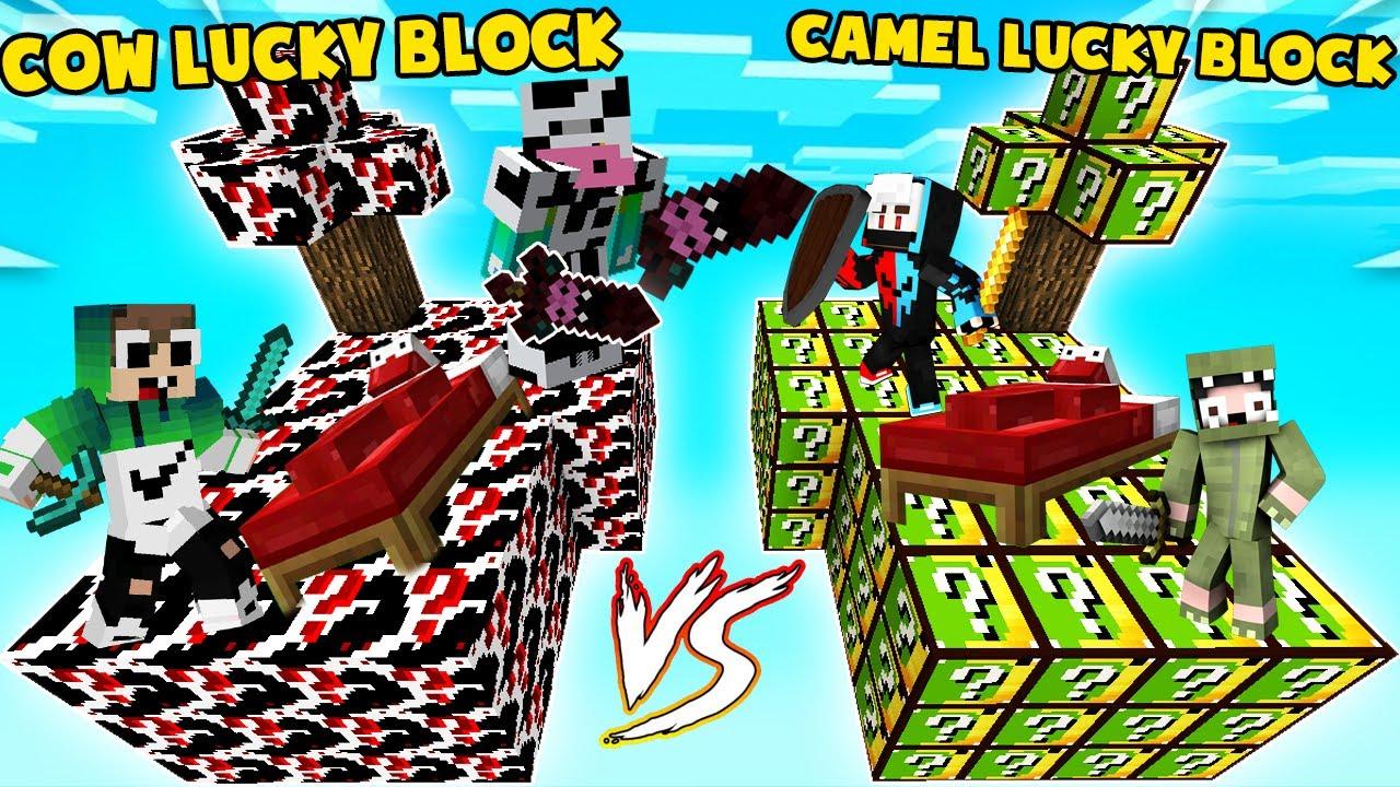 MINI GAME : COW VS CAMEL LUCKY BLOCK BEDWARS ** NOOB TEAM CUỘC CHIẾN GIỮA HAI LOÀI ĐỘNG VẬT ??