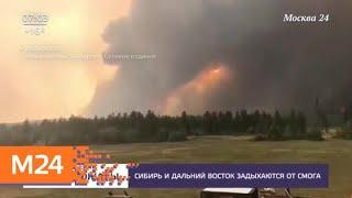 Смотреть видео Актуальные новости России и мира за 25 июля - Москва 24 онлайн