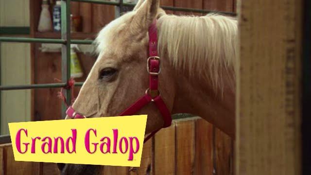 Grand Galop 115