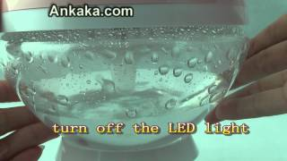 Fresh Air Purifier Ionizer Globe and Humidifier with LED Lights | Air Purifier Review