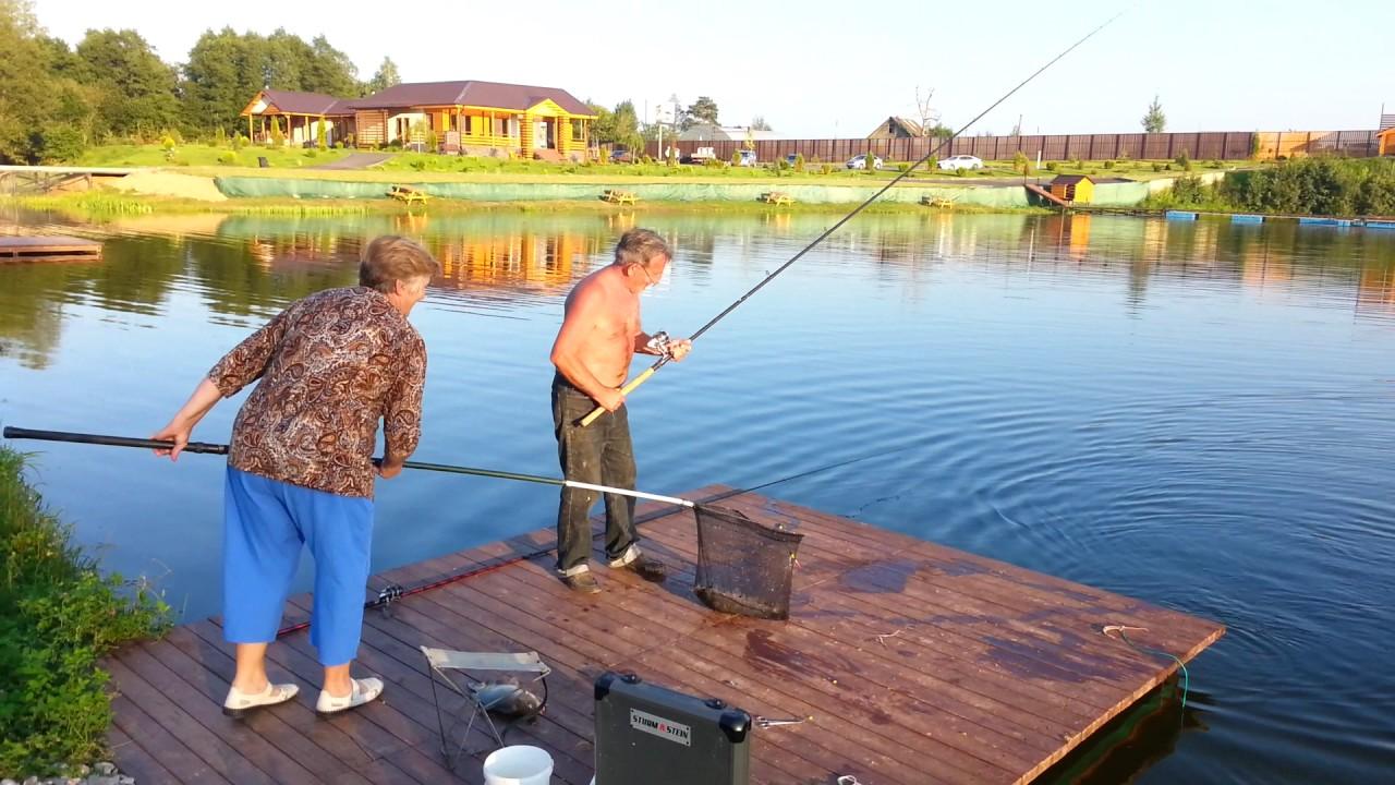 Платная рыбалка золотые караси отзывы