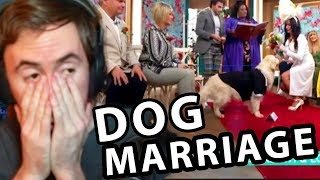 Asmongold: She Actually Married A DOG....
