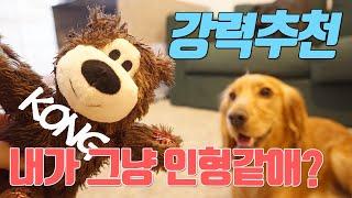 강아지 장난감 강력추천/다뜯는 코카스파니엘이 만족한 콩…