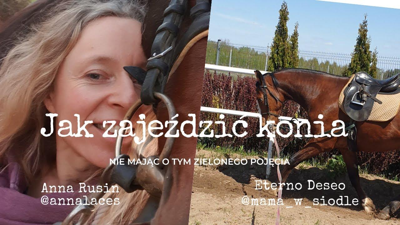 Jak zajeździć konia nie mając o tym zielonego pojęcia