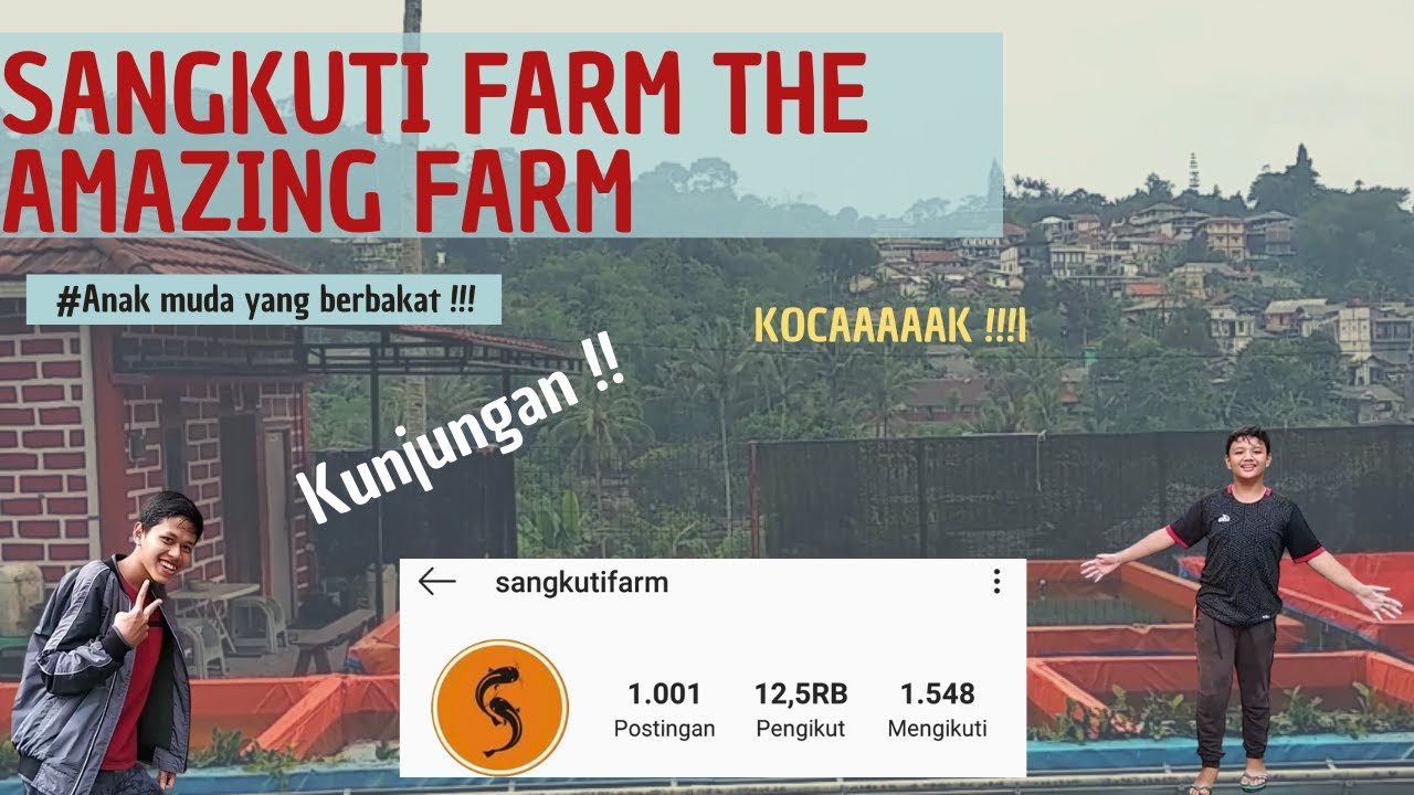 Download Grebek Kolam Sangkuti Farm!!!!