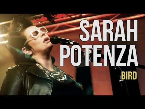 """Sarah Potenza """"Bird"""""""