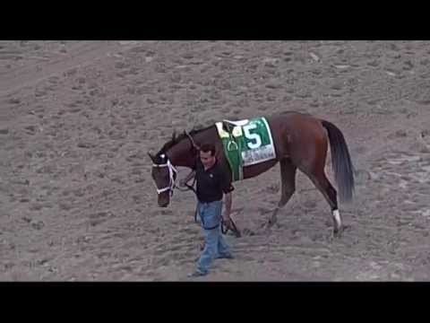 Fountain of Youth Stakes G2  2015 Kentucky Derby Prep