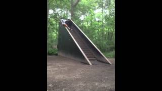 Random stairs in the woods.