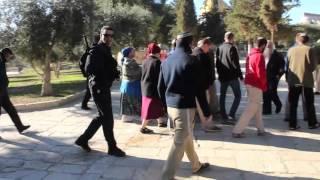 القدس - اقتحامات الأقصى استفزاز لمشاعر المسلمين