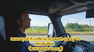 FilipinaAmerican - BACK TO WORK 🚛 FLORIDA - MARYLAND TRIP || Pinay trucker life in USA