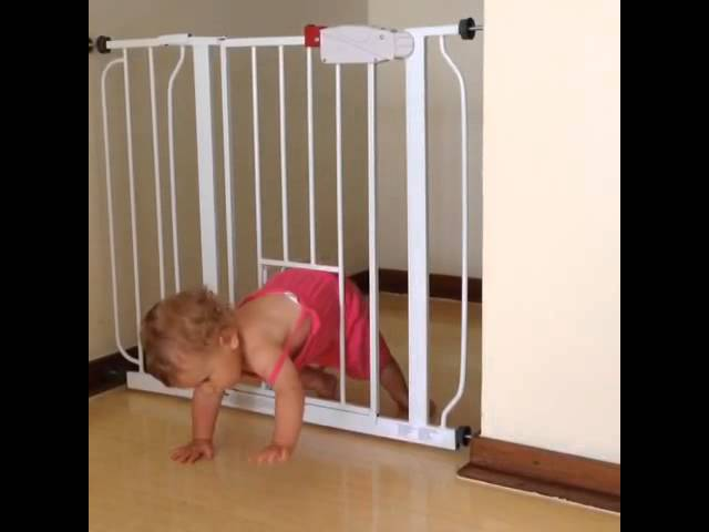 Baby Gate With Pet Door Fail Clip Fail