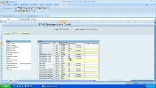 SAP BW بيكس محلل البيانات تحليل الوظائف - الجزء 2 - الفلاتر و ميزات الملاحة