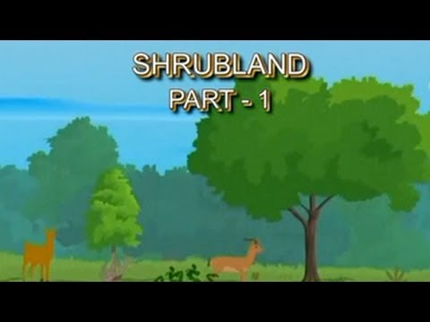 Learn #Biomes   Shrublands   Part 01/02