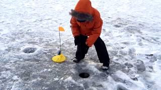 Видео для детей Рыбалка с детьми. Алекс поймали много щук