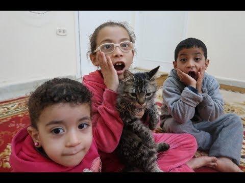 فاجات مريم واشتريت قطة شوفو رد فعلها