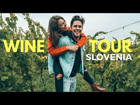 HARVESTING WINE IN SLOVENIA