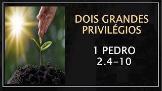 DOIS GRANDES PRIVILÉGIOS - 1 PEDRO 2.4-10- Pr. Marcello