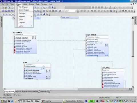 Erwin Model Diagram Management Youtube