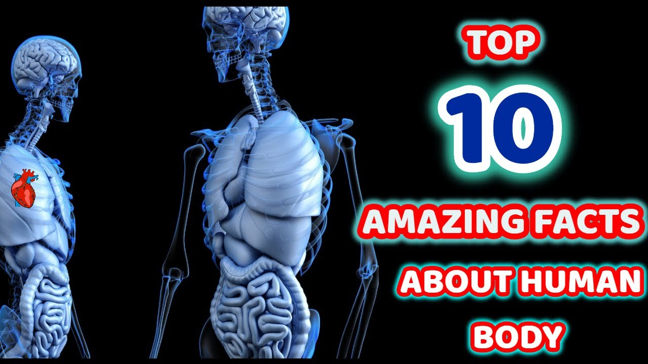 10 Amazing Facts About Human Body You Don't Know About | MEDICO FOOTY FACTS EP.1