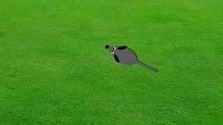 Видео ДЛЯ КОТОВ мышь БЕГАЕТ и ПИЩИТ по экрану
