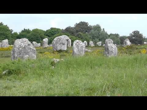 carnac stones and wonderful wild flowers