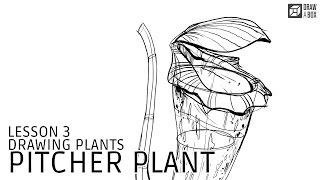 Lesson 3: Pitcher Plant Demo