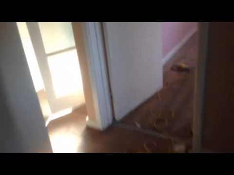 House Rewire, Day 1 - YouTube