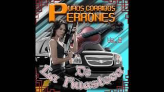 Trios Huastecos Corridos