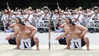 稀勢の里、名古屋でも復活遠し…手応え質問に「うん、まあ」新入幕・琴恵...