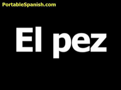 Spanish Word For Fish Is El Pez