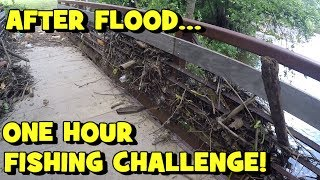 "ONE HOUR Multi-Species FISHING CHALLENGE -- ""FLOOD"" EDITION"
