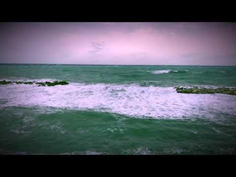 Moment de calme à Antibes