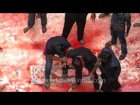 Shia devotee starts to faint due to blood loss at Panja Sharif - Muharram