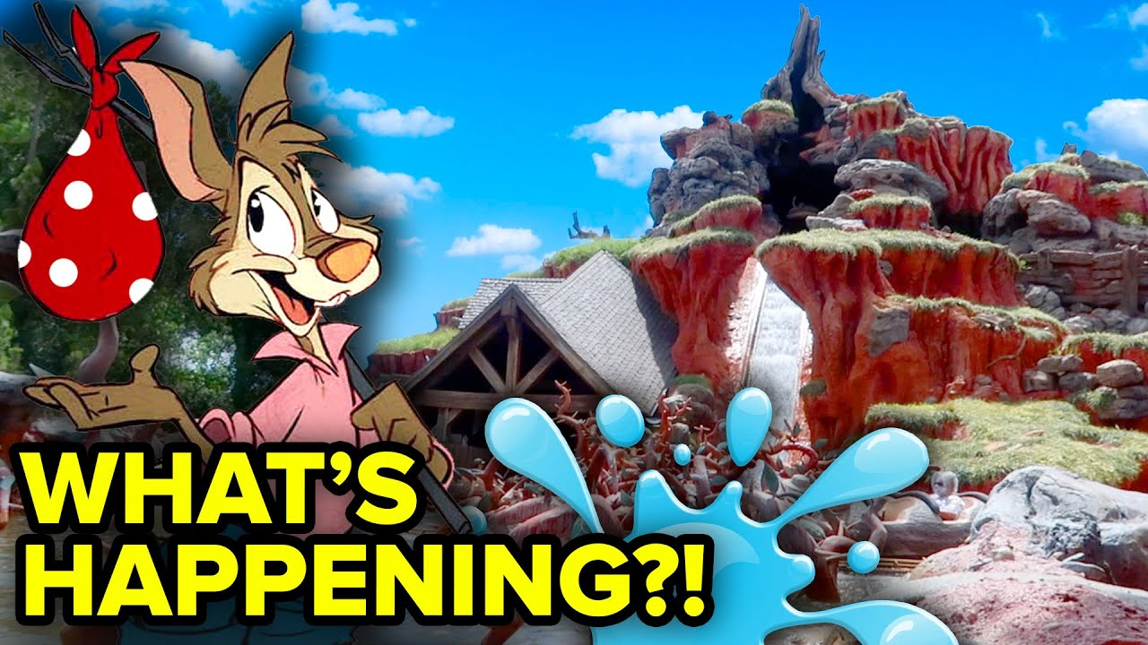 WHAT'S HAPPENING at Disney World's Splash Mountain?!