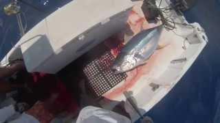 2013 ep 11 elysse s first 163 ahi yellowfin tuna fishing kona hawaii 07 18 13