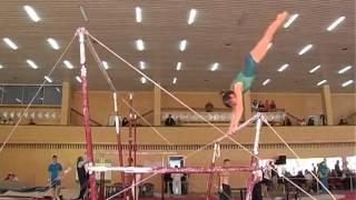 Чемпіонат України зі спортивної гімнастики