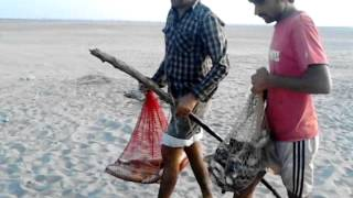 Fishing In Pakistan By KhanGroup At Haji Usman 4
